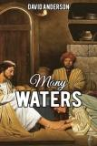cover image for Many Waters, a short story