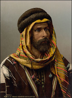 Bedouin Chief