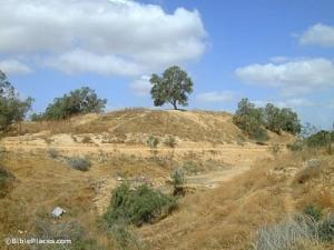 Tel Haror abandoned hill