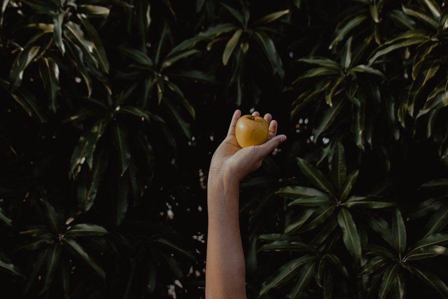 hand grasping golden apple