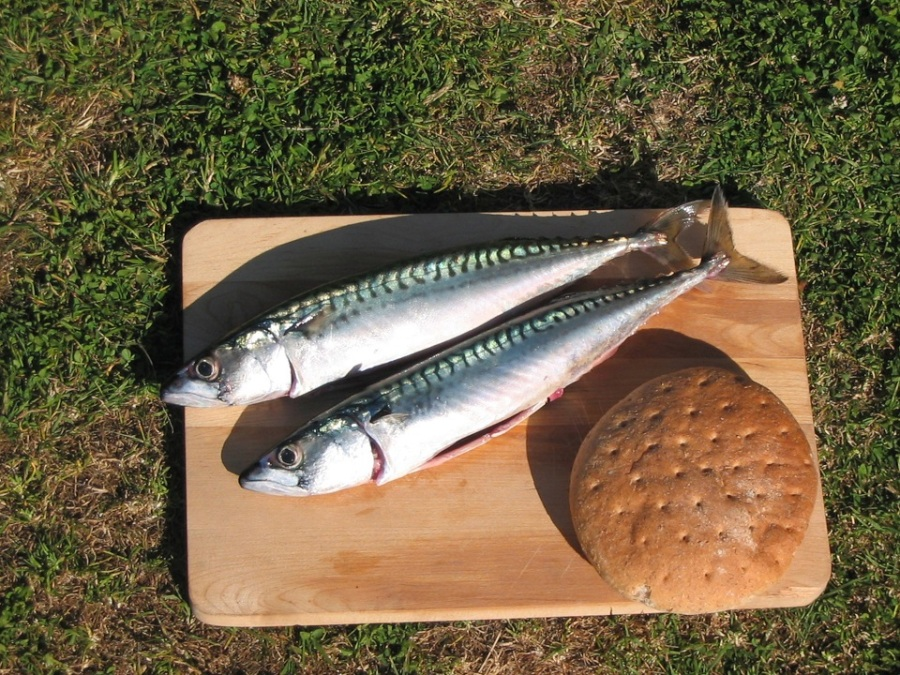 Two mackeral and a loaf on a board